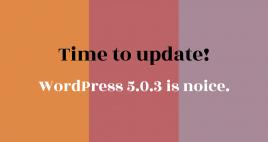 Tijd om te updaten naar WordPress 5.0.3 (ILUZIE blog)